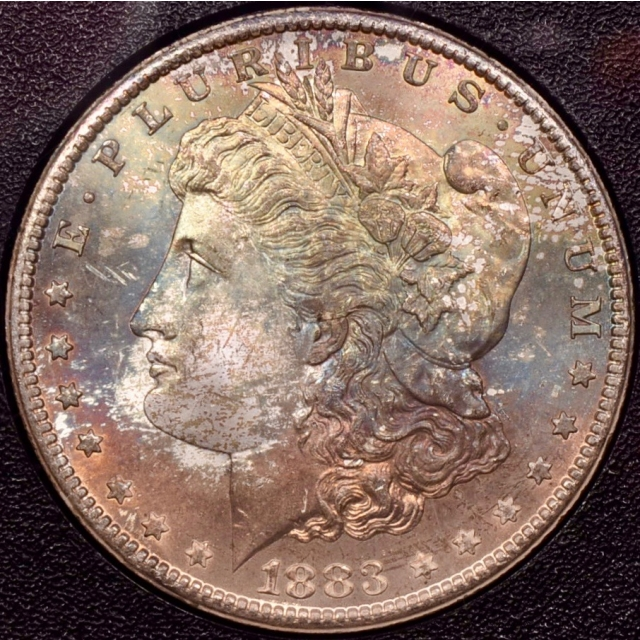 1883-CC GSA Morgan Dollar NGC MS64, beautifully toned obverse