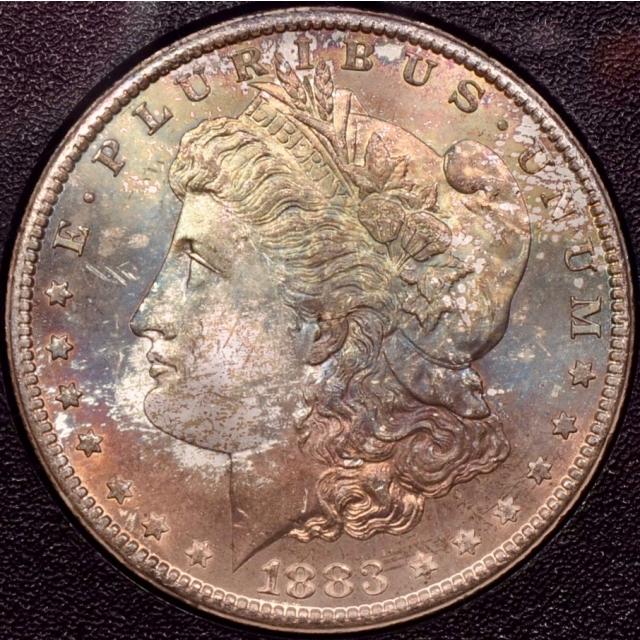 1883-CC GSA Morgan Dollar NGC MS64, beautifully toned obverse