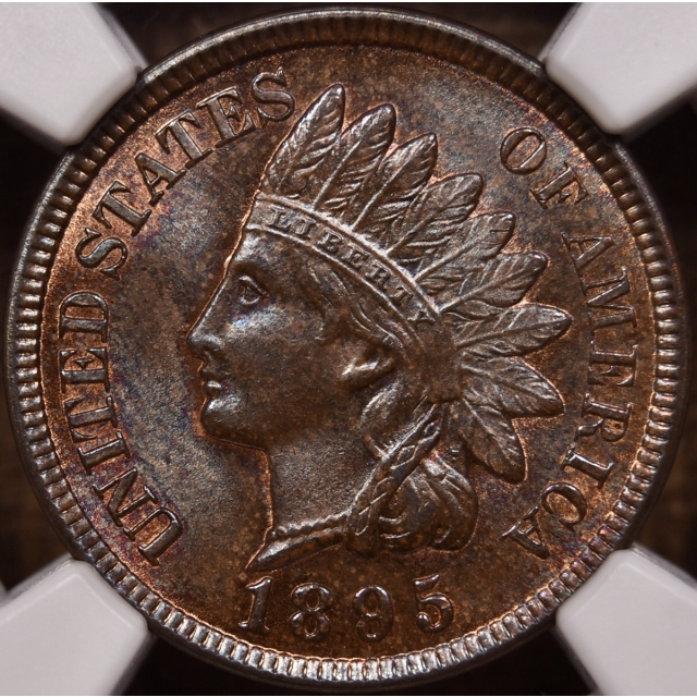 1895 Indian Cent NGC MS64 RB
