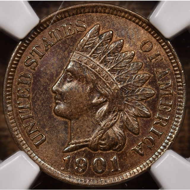 1901 Indian Cent NGC MS63 BN